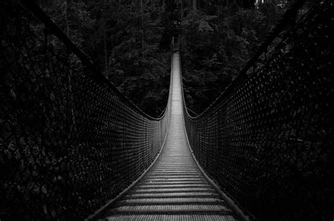 Photo of the Moment: Suspended Above Lynn Canyon