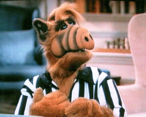 Stairway to Heaven | ALF Wiki | FANDOM powered by Wikia